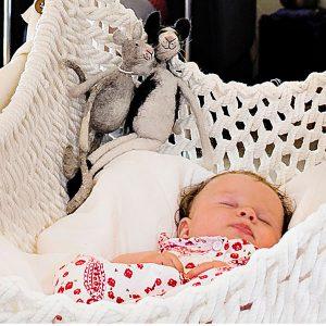Ein traumhaftes Nest für Babys